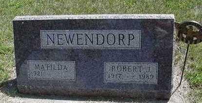 NEWENDORP, MATILDA - Sioux County, Iowa | MATILDA NEWENDORP