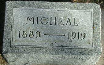 O'HARE, MICHAEL - Sioux County, Iowa | MICHAEL O'HARE
