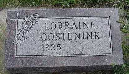OOSTENINK, LORRAINE - Sioux County, Iowa | LORRAINE OOSTENINK