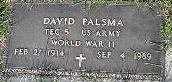 PALSMA, DAVID (MILITARY) - Sioux County, Iowa | DAVID (MILITARY) PALSMA