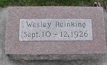 REINKING, WESLEY - Sioux County, Iowa   WESLEY REINKING