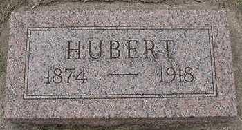 RHYNSBURGER, HUBERT  D. 1918 - Sioux County, Iowa | HUBERT  D. 1918 RHYNSBURGER
