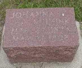 RUESINK, JOHANNA - Sioux County, Iowa | JOHANNA RUESINK