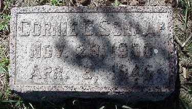 SCHAAP, CONRIE C. - Sioux County, Iowa   CONRIE C. SCHAAP