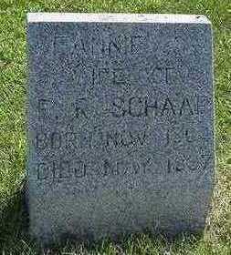 SCHAAP, FANNIE G. - Sioux County, Iowa   FANNIE G. SCHAAP