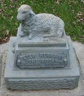 SCHLUMBOHM, PETER HERMAN - Sioux County, Iowa   PETER HERMAN SCHLUMBOHM