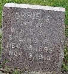 STEINBERG, ORRIE E. - Sioux County, Iowa   ORRIE E. STEINBERG
