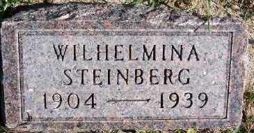 STEINBERG, WILHELMINA - Sioux County, Iowa   WILHELMINA STEINBERG