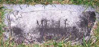 STELLINGWERF, MELLE ( 1871-1939) - Sioux County, Iowa | MELLE ( 1871-1939) STELLINGWERF