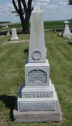 TEPASKE, HENRY J. - Sioux County, Iowa | HENRY J. TEPASKE
