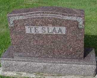 TESLAA, HEADSTONE - Sioux County, Iowa | HEADSTONE TESLAA