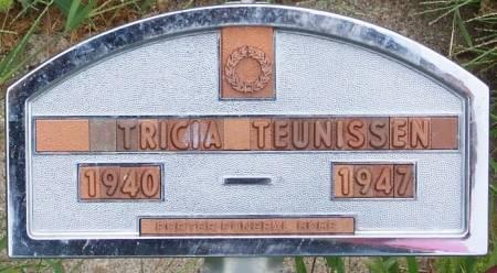 TEUNISSEN, TRICIA - Sioux County, Iowa   TRICIA TEUNISSEN