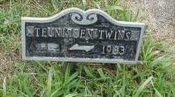 TEUNISSEN, TWINS - Sioux County, Iowa | TWINS TEUNISSEN
