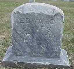 VANDENBERG, EDWARD JAMES (BABY) - Sioux County, Iowa   EDWARD JAMES (BABY) VANDENBERG