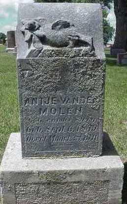 VANDERMOLEN, ANTJE - Sioux County, Iowa | ANTJE VANDERMOLEN