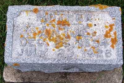 VANDERZWAAG, ANTJE (1854-1926) - Sioux County, Iowa | ANTJE (1854-1926) VANDERZWAAG