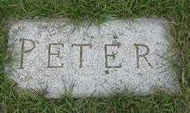 VANLAAR, PETER - Sioux County, Iowa | PETER VANLAAR