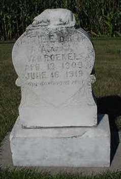 VANROEKEL, ARTIE E. - Sioux County, Iowa   ARTIE E. VANROEKEL