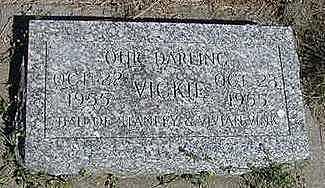 VINK, VICKIE - Sioux County, Iowa | VICKIE VINK