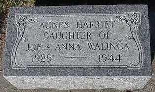WALINGA, AGNES HARRIET - Sioux County, Iowa | AGNES HARRIET WALINGA