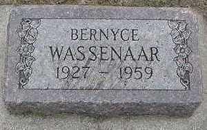 WASSENAAR, BERNYCE - Sioux County, Iowa | BERNYCE WASSENAAR