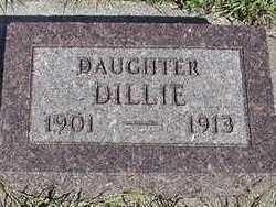 WOLFSWINKEL, DILLIE - Sioux County, Iowa   DILLIE WOLFSWINKEL