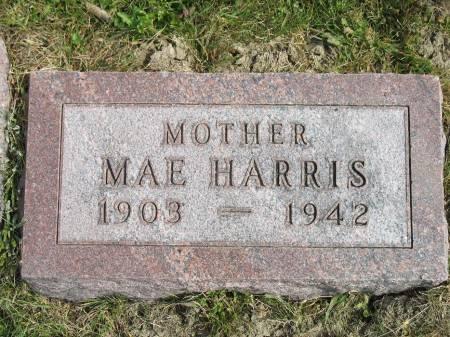 BELL HARRIS, EDITH MAE - Story County, Iowa | EDITH MAE BELL HARRIS