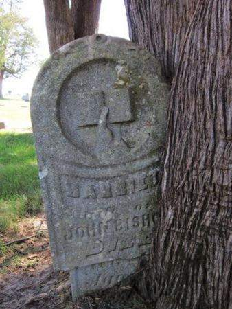 PALMER BISHOP, HARRIET - Tama County, Iowa | HARRIET PALMER BISHOP