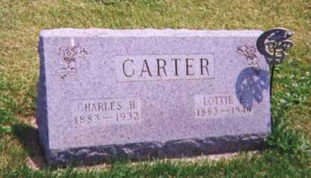 LOVETT CARTER, LOTTIE - Tama County, Iowa | LOTTIE LOVETT CARTER