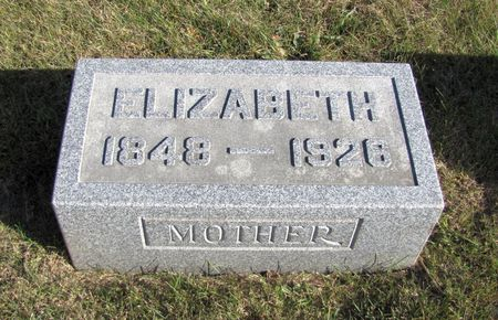 NEIL, ELIZABETH - Tama County, Iowa | ELIZABETH NEIL