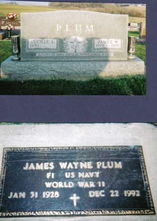 PLUM, JAMES WAYNE - Tama County, Iowa | JAMES WAYNE PLUM