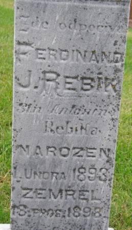 REBIK, FERDINAND - Tama County, Iowa | FERDINAND REBIK