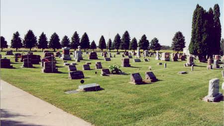 RECTOR CHELSEA, CEMETERY - Tama County, Iowa | CEMETERY RECTOR CHELSEA