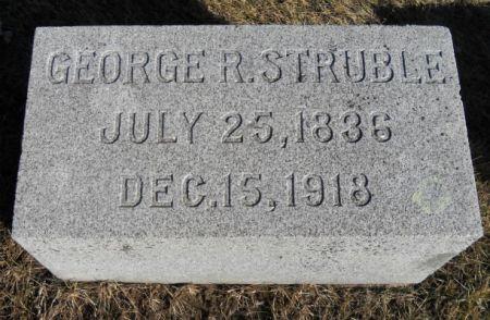 STRUBLE, GEORGE - Tama County, Iowa | GEORGE STRUBLE