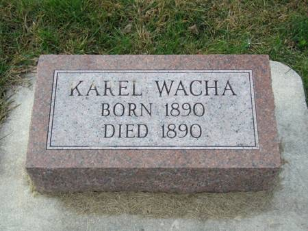 WACHA, KAREL - Tama County, Iowa | KAREL WACHA