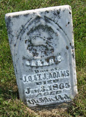 ADAMS, SARAH ELLEN - Taylor County, Iowa   SARAH ELLEN ADAMS