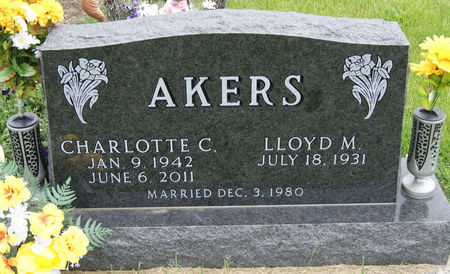 AKERS, CHARLOTTE CAROL - Taylor County, Iowa   CHARLOTTE CAROL AKERS