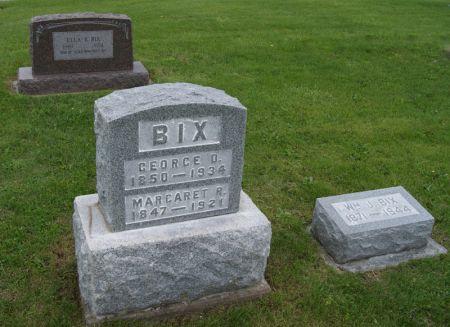 BIX, GEORGE DAVID, FAMILY PLOT OF - Taylor County, Iowa | GEORGE DAVID, FAMILY PLOT OF BIX