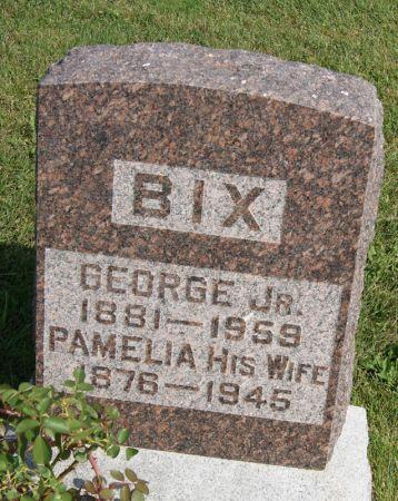 GANT BIX, PAMELIA ANN - Taylor County, Iowa | PAMELIA ANN GANT BIX