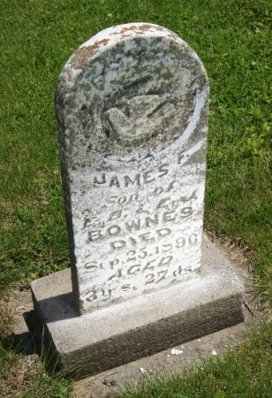 BOWNES, JAMES F. - Taylor County, Iowa | JAMES F. BOWNES