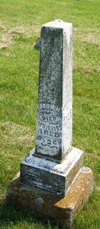 BREMER, JOHN H. - Taylor County, Iowa | JOHN H. BREMER