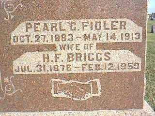FIDLER BRIGGS, PEARL - Taylor County, Iowa | PEARL FIDLER BRIGGS