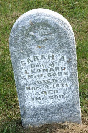 COBB, SARAH A. - Taylor County, Iowa | SARAH A. COBB