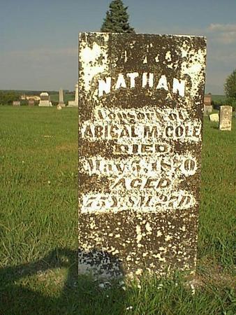 COLE, NATHAN - Taylor County, Iowa | NATHAN COLE
