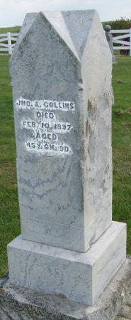 COLLINS, JOHN ALBERT - Taylor County, Iowa   JOHN ALBERT COLLINS