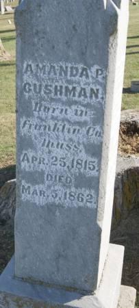PARMENTER CUSHMAN, AMANDA - Taylor County, Iowa | AMANDA PARMENTER CUSHMAN