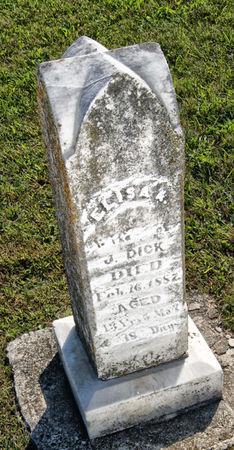 DICK, ELIZA ANN - Taylor County, Iowa | ELIZA ANN DICK