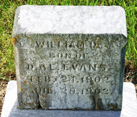 EVANS, WILLIAM D. - Taylor County, Iowa | WILLIAM D. EVANS