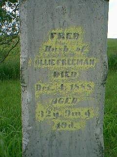 FREEMAN, FRED - Taylor County, Iowa | FRED FREEMAN
