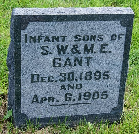 GANT, SAMUEL WINFRED, INFANT SONS OF - Taylor County, Iowa | SAMUEL WINFRED, INFANT SONS OF GANT